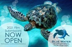 BlueWaterFilmFestival